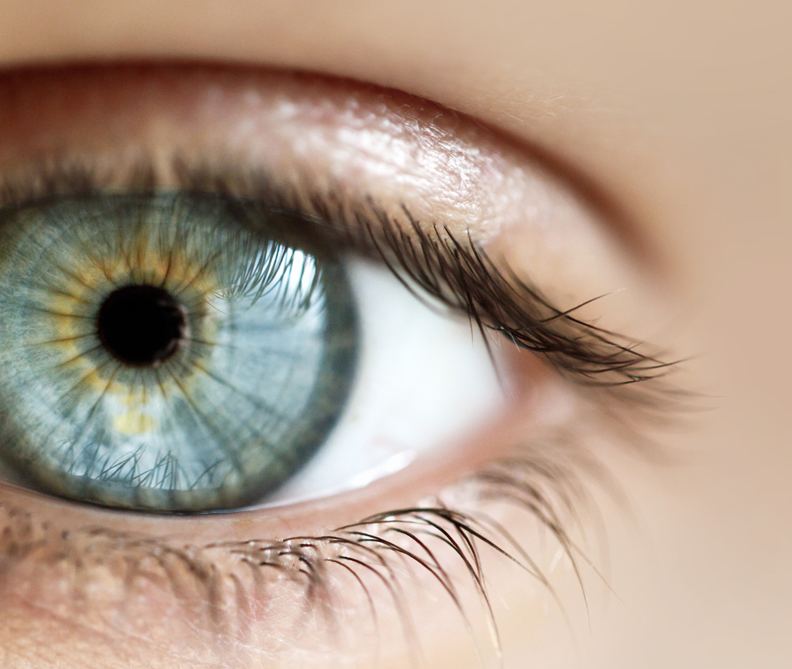 Eye Movements Reveal Temporal >> Facebook Cases Centre For Eye Health